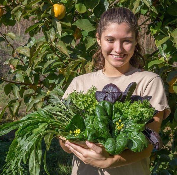Orticoltura e Frutticoltura